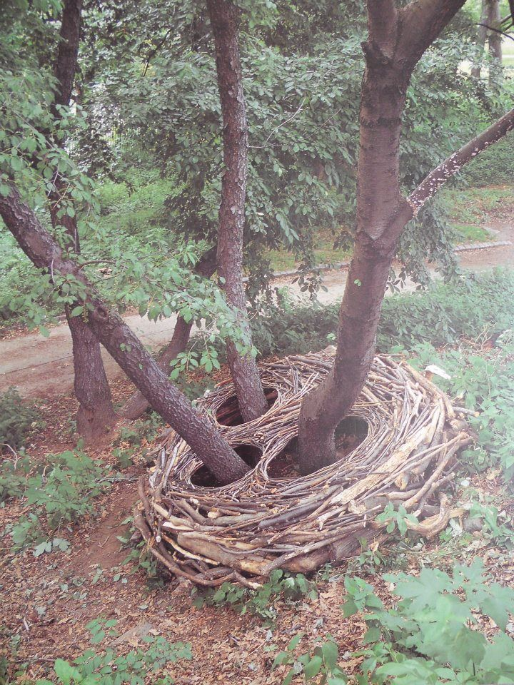 Andy Goldsworthy  I love the natural imagery of the bird's nest and the fact that it was actually made by a man, rather than the animal who is actually supposed to create it