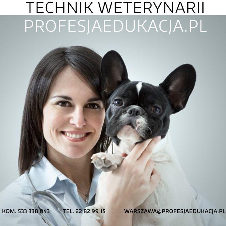 Mamy dobrą wiadomość dla osób, które chcą związać swą przyszłość zawodową z #pomocą #zwierzętom ! Jako #technik #weterynarii będziesz mieć możliwość udzielania pierwszej pomocy, sprawowania kontroli medycznej i opieki nad zwierzętami :) Brzmi interesująco? :) Skontaktuj się z nami - zapisy do #Szkoły #Policealnej już rozpoczęte !