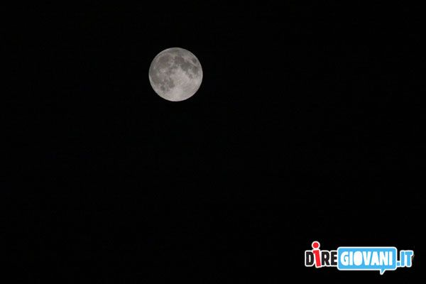 The Moon by Elisa Bassani