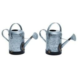 Transitional Watering Cans by AMB FURNITURE & DESIGN