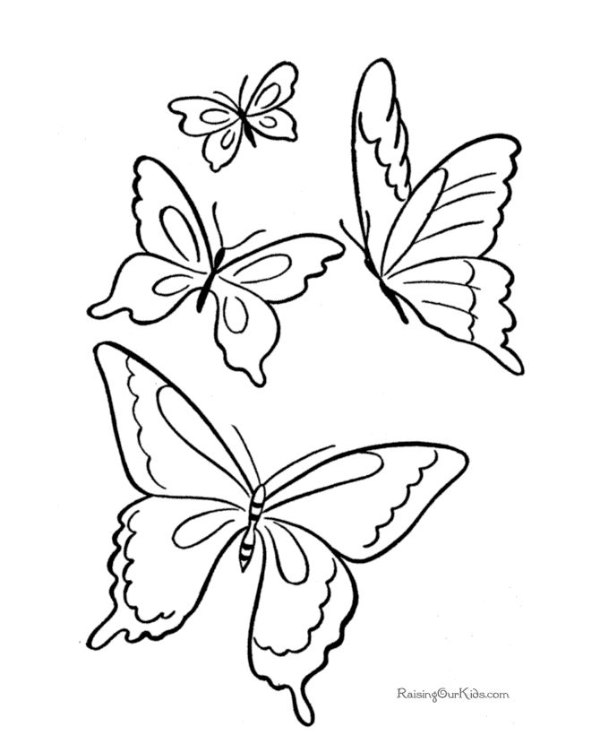 Printable Coloring Pages of Butterfly 008   Printables   Pinterest ...