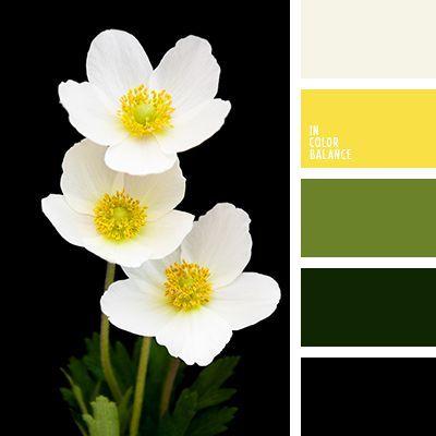 бежевый, бледно-салатовый, грязный белый, желтый, зеленый, нежная палитра, оттенки салатового, подбор цвета, подбор цветов, салатовый, цвет зеленых стеблей, цветовое решение для дома, черный цвет.