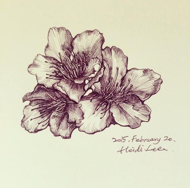 #illustration #flowers #line #ink #sakura