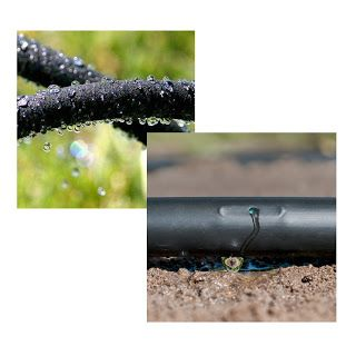 The Differences Between Soaker Hose and Drip Line