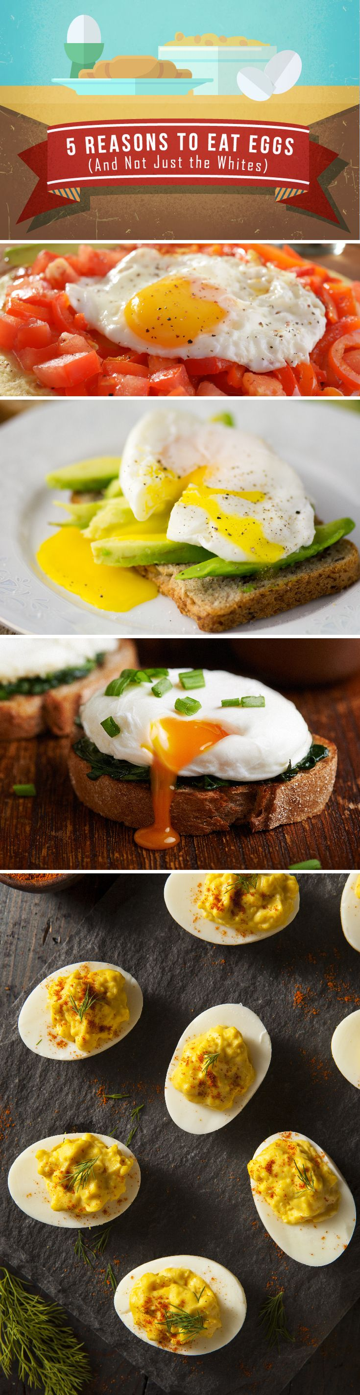 If you stuff down bland egg whites, youve been making yourself miserable for no reason. Eat the entire egg, yolk and all, reaping a TON of health benefits. #weightloss #fitness #health #eggs #recipe #exercise #GYFT More Bland Eggs, Health Eggs, Eggs White, Eggs Recipe, Recipe Exercise, Fit Health, Eggs Yolks, Exercise Gyft, Entir Eggs