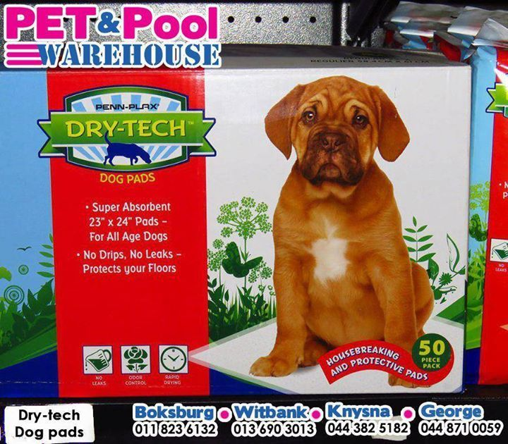 Get this #Dogmed Training Puppy Dry-tech pads, available at your nearest #PetPoolWarehouse. #ilovemydog