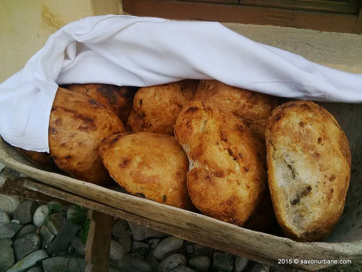 Paine de casa la Transylvania Culinary Academy
