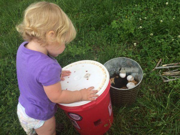 DIY Compost Bin with a 5 Gallon Bucket | Compost bin diy ...