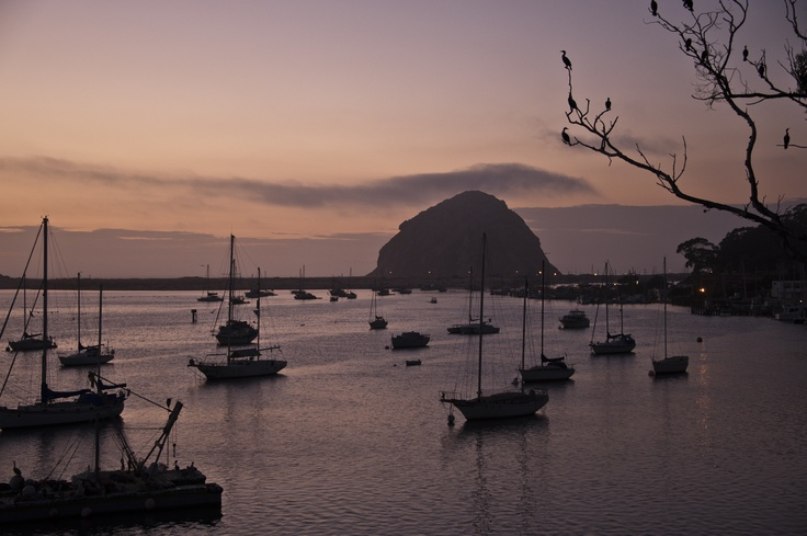 Morro Bay, CA: The view from the Inn at Morro Bay