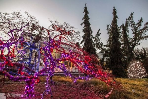 Photo: the Garden of Lights Festival, the Brookside Garden and the children's playground at Wheaton Park, Maryland, USA