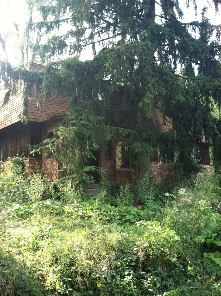 17 best images about abandoned houses in woods on pinterest spooky house gothic and abandoned - Houses woods nature integrated ...