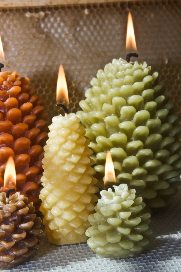 Pine Cone Candles 876 Best Carved Candles Images On Pinterest Carved Candles