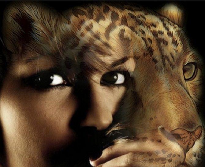 shape shifter leopard