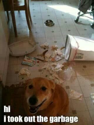 Look...I took out the garbage