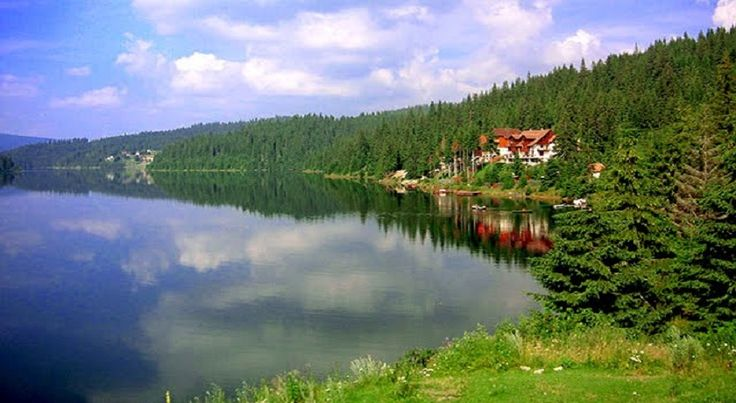 Lacul Cincis este un lac de acumulare din jud. Hunedoara. Lacul Cincis este de unul dintre cele mai mari lacuri din Transilvania, acesta avand o adancime de 48 m, si o suprafata de aproximativ 200 ha.