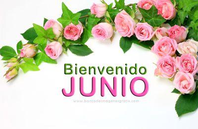"""BANCO DE IMAGENES: Postales con mensaje de """"Bienvenido Junio"""" para co..."""