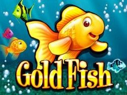Goldfish slot is just as popular online as it is in the land based casinos. Play it for free today at Vegas Slots Online  http://www.vegasslotsonline.com/wms/goldfish/