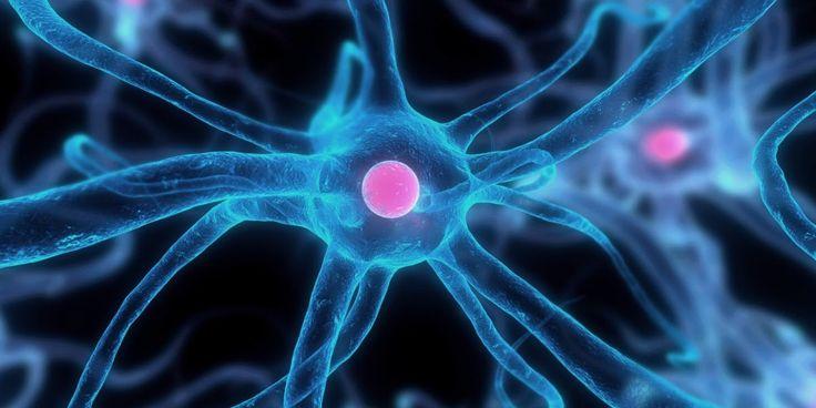 Χιούστον: Νέα μέθοδο για να κάνουν τα «γερασμένα κύτταρα... πιο νέα» ανακάλυψαν επιστήμονες