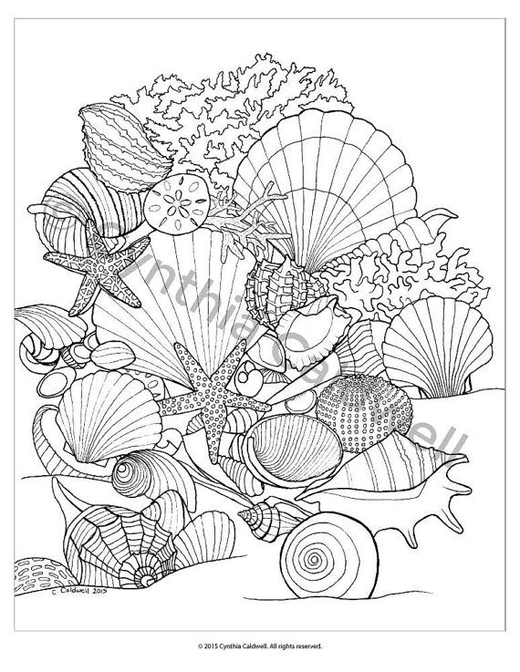 207 best Coloring Ocean images on Pinterest Coloring books