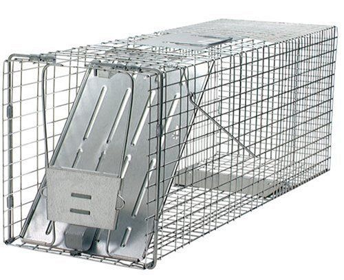 Havahart 1079 Live Animal Professional-Style One-Door Raccoon, Groundhog, Opossum, and Stray Cat Cage Trap by Havahart. $44.99. Ideal for catching raccoons, stray cats, groundhogs (woodchucks), opossums,and similar-size nuisance animals. Havahart traps are made in the U.S.A.. Mesh openings of our groundhog traps are smaller than competing traps of comparable size to prevent escapes and stolen bait.. Spring loaded door and sensitive triggers ensure quick, secure capture...