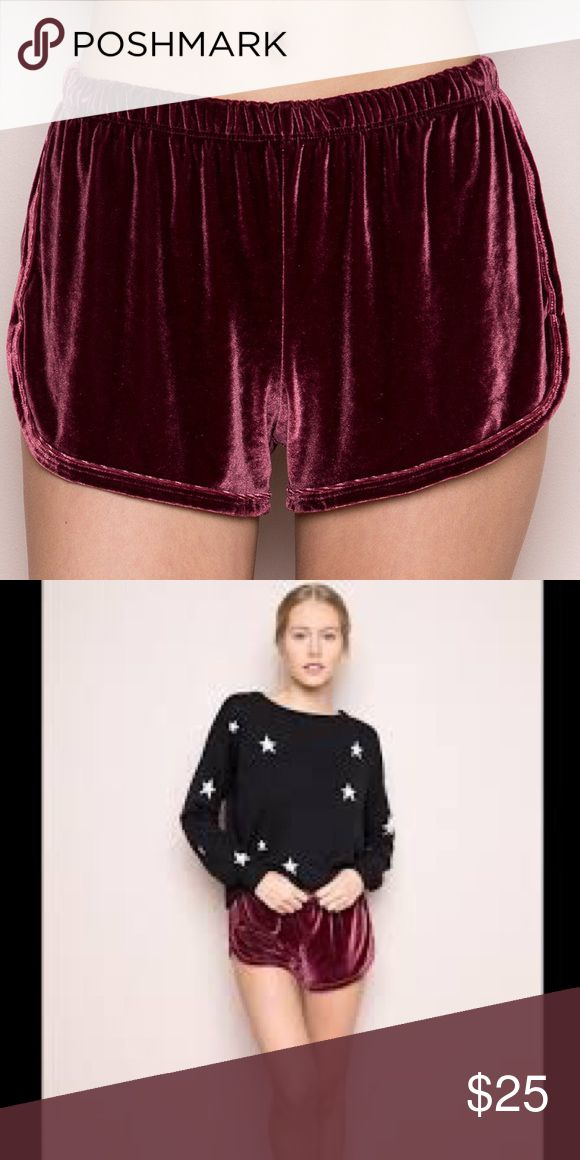 NWT maroon velvet shorts Maroon velvet lisette shorts! From brandy melville! Brand new with tags! Best fits size xs-s bottoms. Lisette style shorts Brandy Melville Shorts