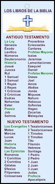 los libros de la biblia                                                                                                                                                                                 Más