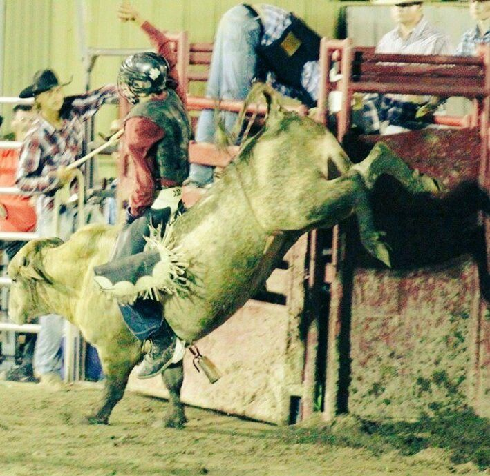 A Great Day is Buckin' 8 Straight for 88 Bull Rider Louden Maples Riding & Tearing it up  Team Cowboy Coffee Chew