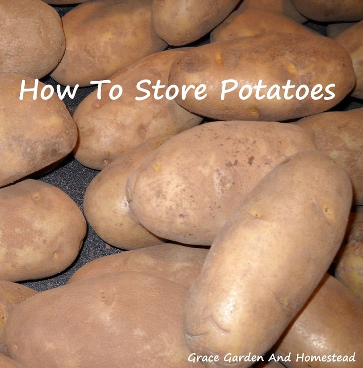 How do you store potatoes?  As a former potato farmer, I'll tell you how we stored them.