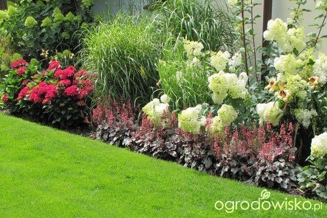 Pokaze Nasz Ogrod Garden Inspiration Plants Garden