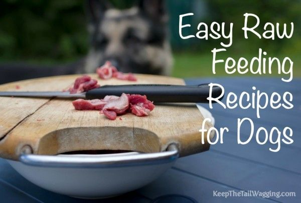 Easy Raw Feeding Recipes for Dogs  Duck wings, duck necks, duck hearts and a base mix by The Honest Kitchen.
