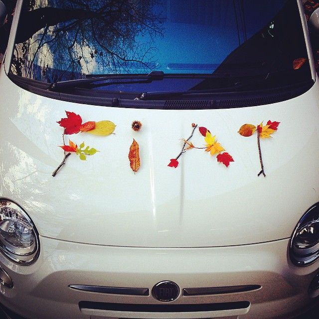 The perfect fall with #Fiat500.