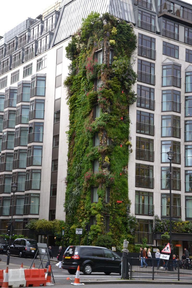 #Grüne #Fassade gesehen in London. ©Foto: Sofia Delgado