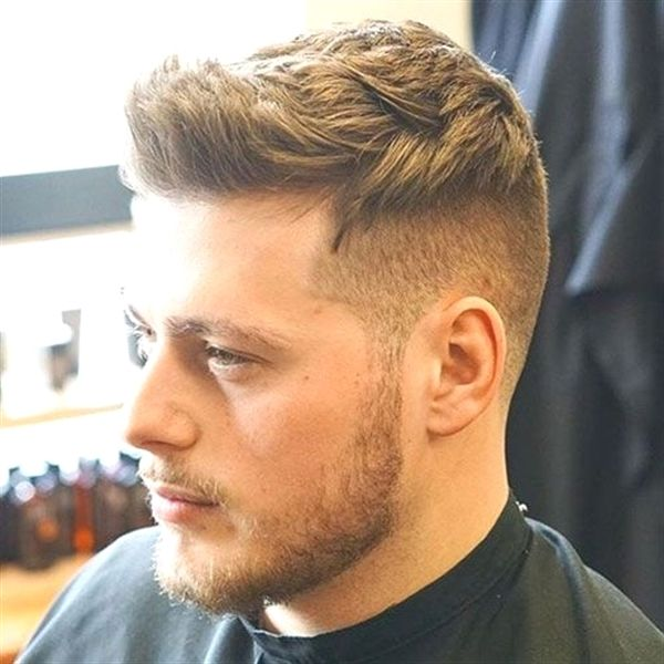 Hair Model Seattle Spornette Hair Brushes Tourmaline Hair Cuttery Near Boynton Beach Fl Spor Mens Haircuts Short Men Haircut Styles Mens Hairstyles Short