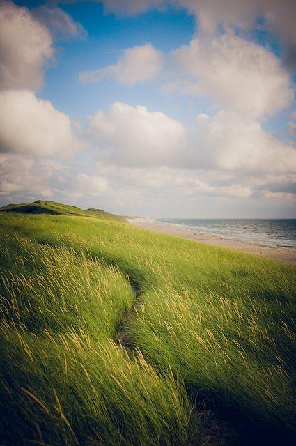 hvide sande, denmark. Inspiration // www.nordisktrae.dk