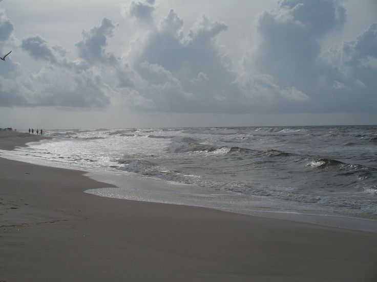 83 best images about perdido key fl on pinterest oyster for Perdido key fishing