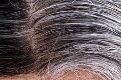 Receita natural para escurecer cabelos brancos sem sair de casa - Remédio-Caseiro