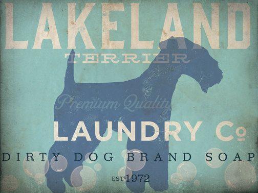 Lakeland Terrier laundry company laundry room by geministudio, $25.00