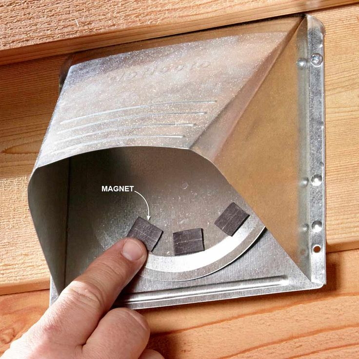 Photo Album Gallery Annoying Noises and How to Eliminate Them Forever