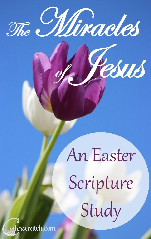 Celebrate Easter our our study of the Miracles of Jesus