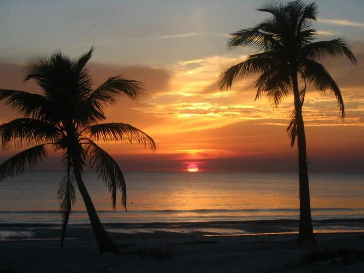 fort myers beach catholic girl personals Press to search craigslist save search options close apts/housing for rent search titles only  fort wayne, in (fwa) grand rapids, mi (grr) green bay, wi (grb.