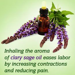 inhale the aroma of clary sage oil to ease labor. Apply to palms and feet or onto belly.