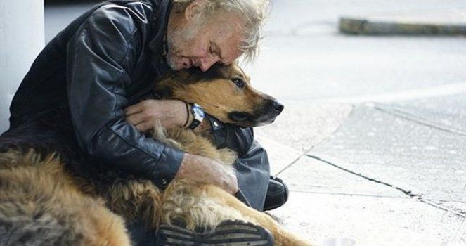 Shelters for homeless not allow their animals in Spain, let's change it!