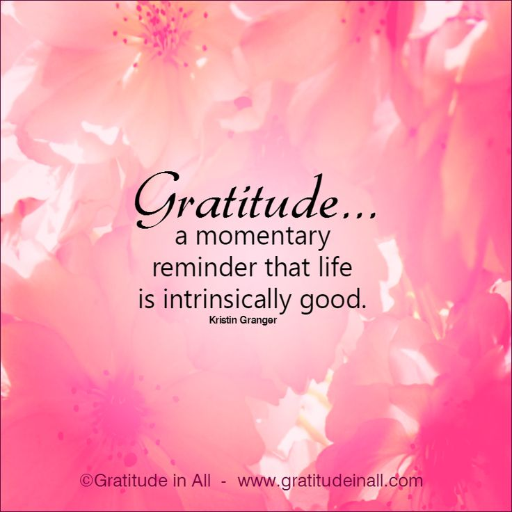 Gratitude in All | Embracing the Whole of Life