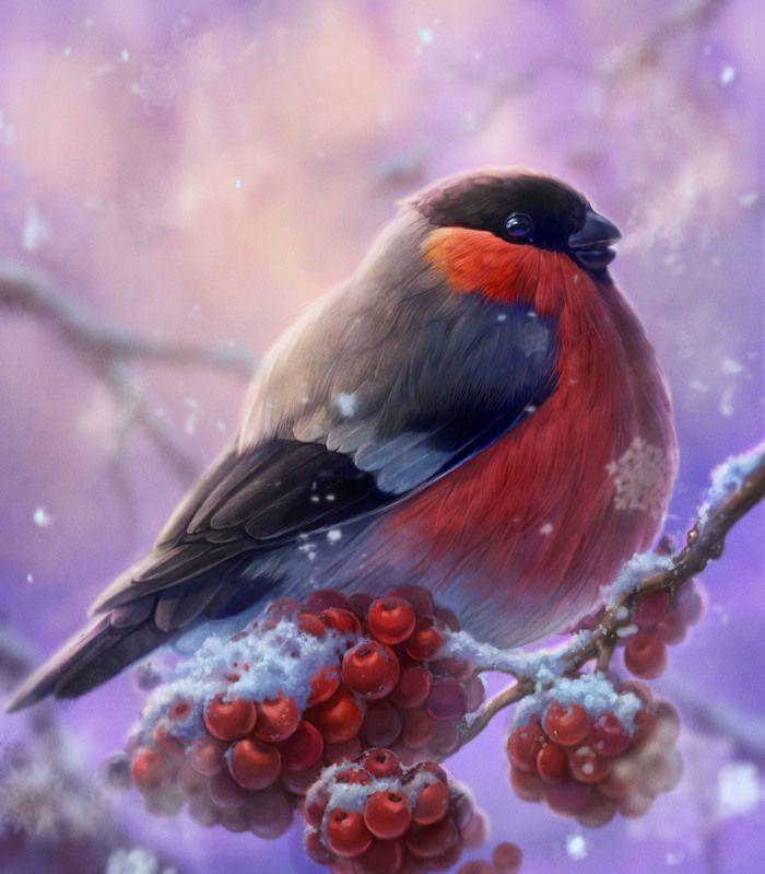 Открытки, птицы картинки красивые на телефон