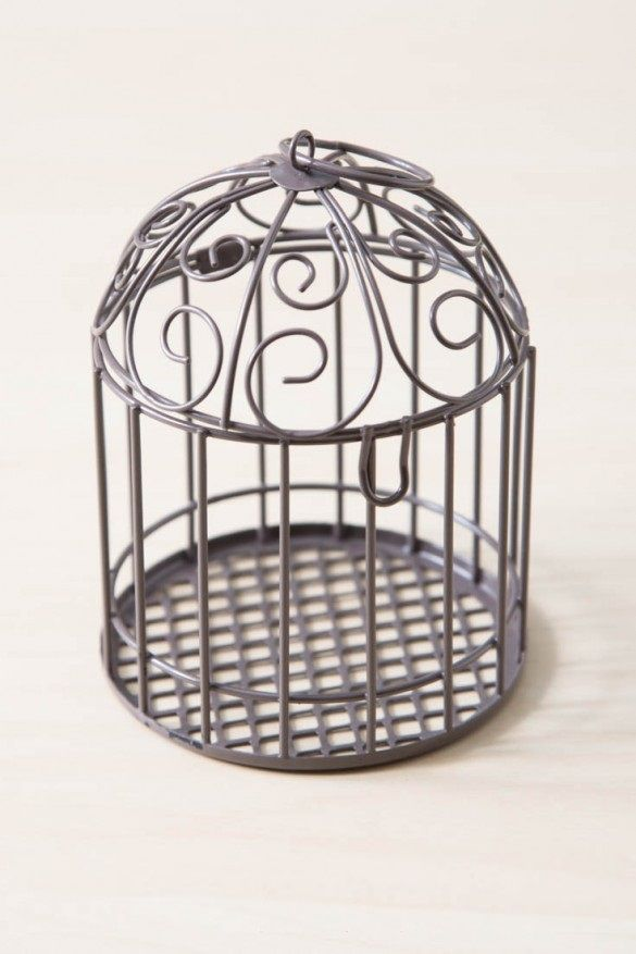 38 Best Cage Bird Bath Images On Pinterest Bird Baths