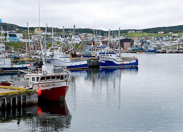 Bonavista, Newfoundland, Canada