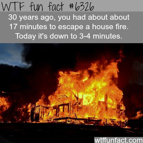 You only have about 4 minutes to - WTF fun facts - http://didyouknow.abafu.net/facts/you-only-have-about-4-minutes-to-wtf-fun-facts