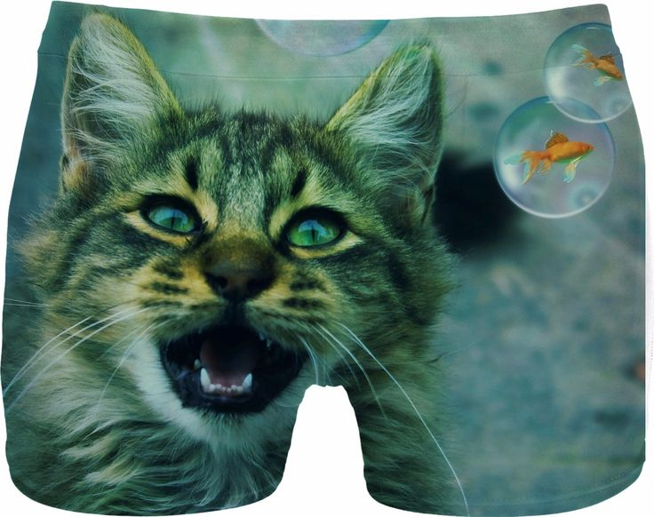 Check out my new product https://www.rageon.com/products/cat-and-fish-men-underwear?aff=BWeX on RageOn!