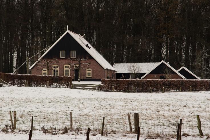 Erfgoed De Hinnen    Burgermeester Wallerstraat   Zuid Berghuizen