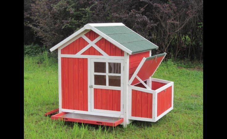 Des poules dans ma cour les id es de ma maison for Idee deco urbain